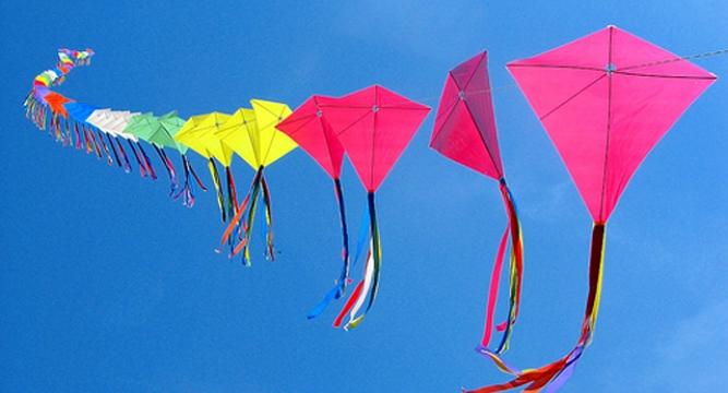 Makar Sankranti- Kite Festivals
