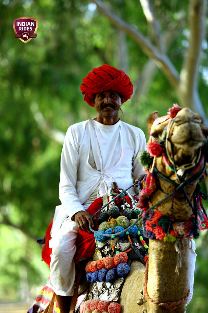 Men on Camel